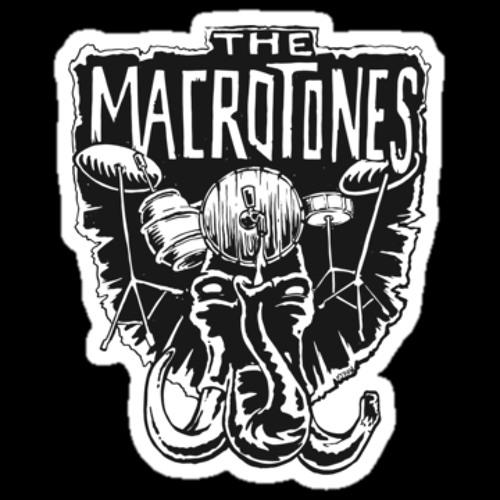 The Macrotones's avatar