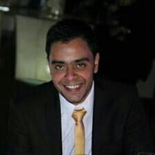Alaa M. Salah's avatar