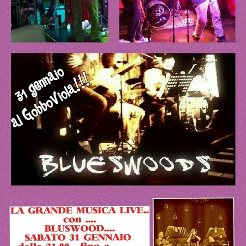 BlueswoodS's avatar