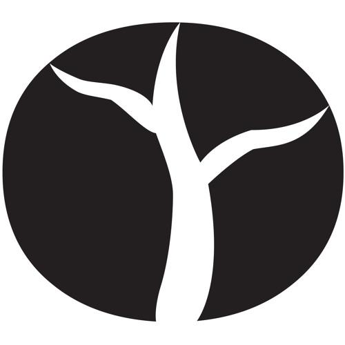 Aurora Innovations's avatar