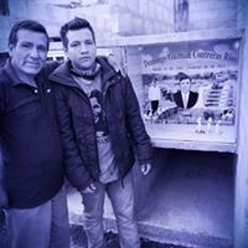 Wilmer Alvarado Contreras's avatar