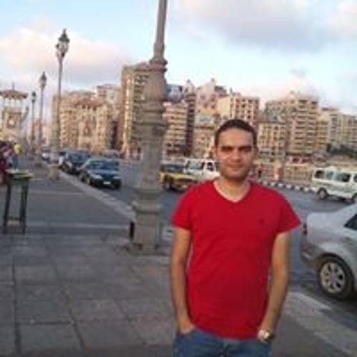 Mostafa Helmi's avatar