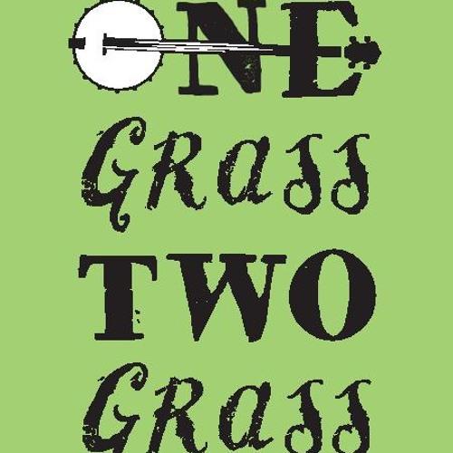 onegrasstwograss...'s avatar