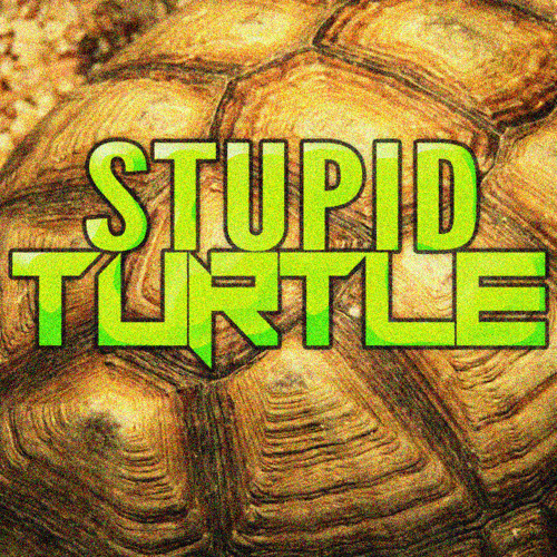 Stupid Turtle [Official]'s avatar