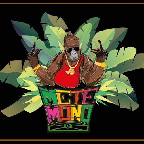 Mete Mono's avatar