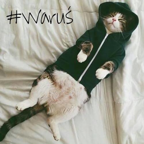 Waruś's avatar