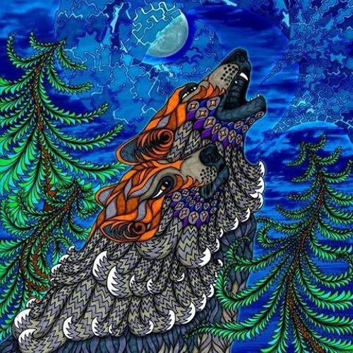 Transcequencia's avatar