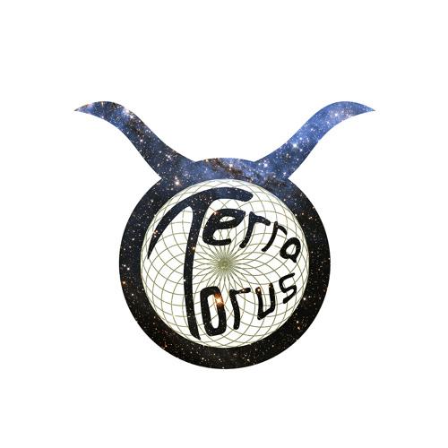 terra torus's avatar