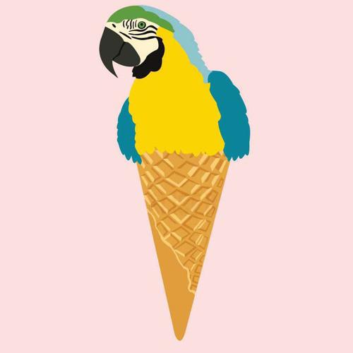 Cucurucho Groovalizacion's avatar