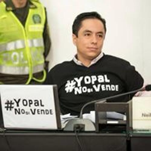Leonardo Puentes Vargas's avatar