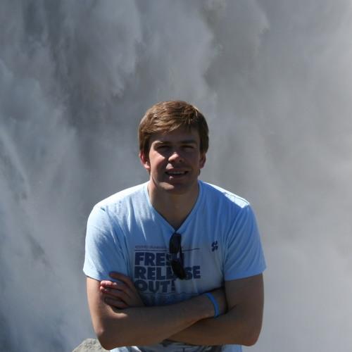 Mindaugas Statulevicius's avatar