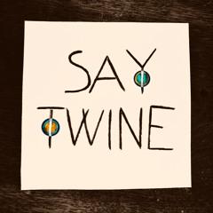 Say Twine