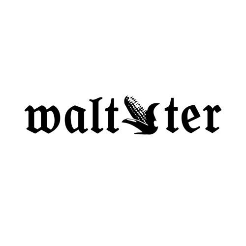 waltmeister's avatar
