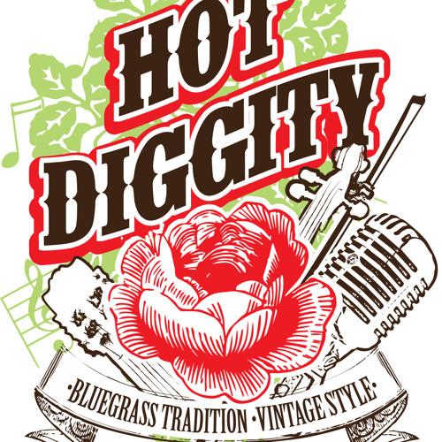 Hot Diggity Bluegrass NZ's avatar