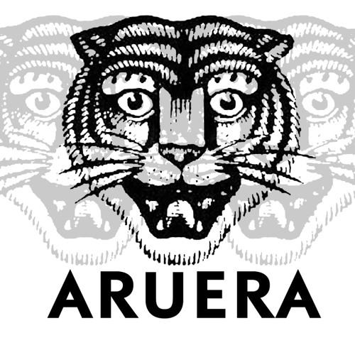 Aruera's avatar