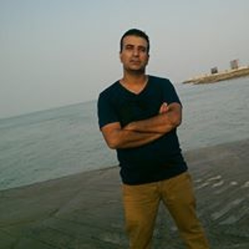 Reza Hamoon's avatar