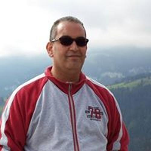 Abdulmonem Ellafi's avatar