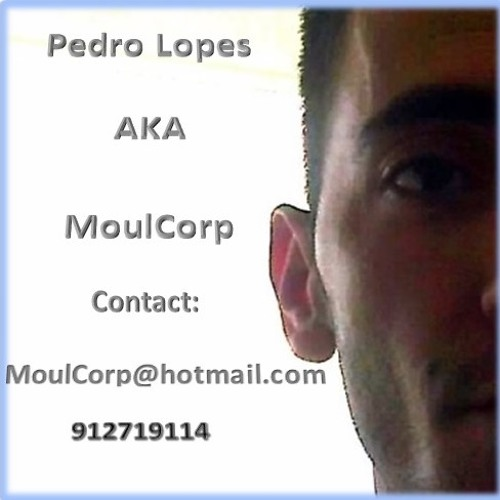 Moul Corp's avatar
