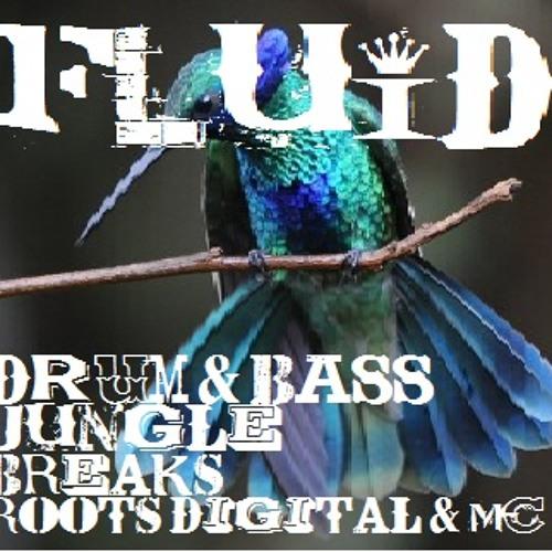 FLuiD's avatar