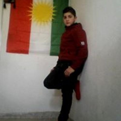 Melik Azadi's avatar