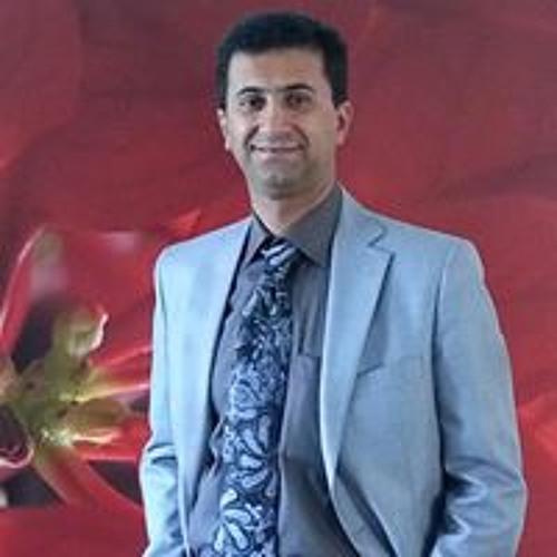 Mehdi Raje's avatar