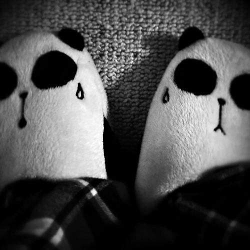 Panda Slippers's avatar