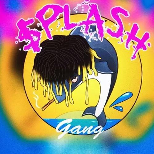 Chubb $plash's avatar