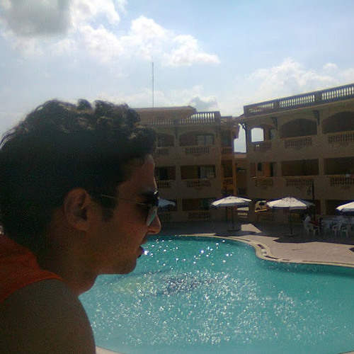 Ahmed Elgohary's avatar