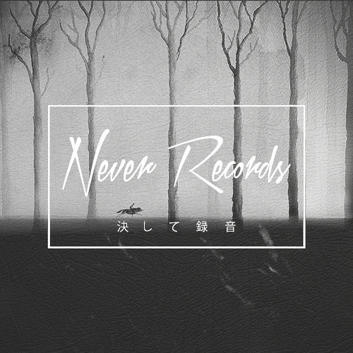 Never Records's avatar