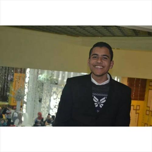 Mohamed E.Abou Zeid's avatar