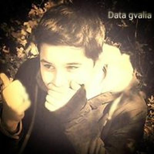 Data Gvalia's avatar