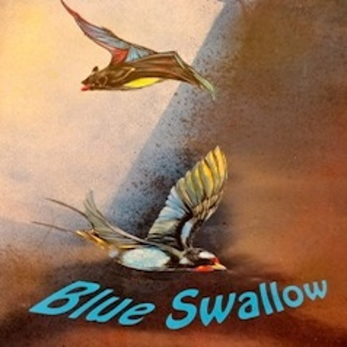 Blue Swallow's avatar