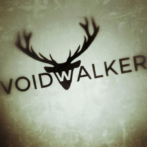 VoidWalker's avatar