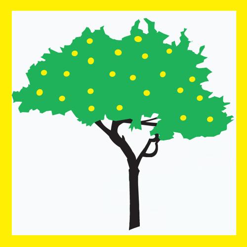 The Lemons Center's avatar
