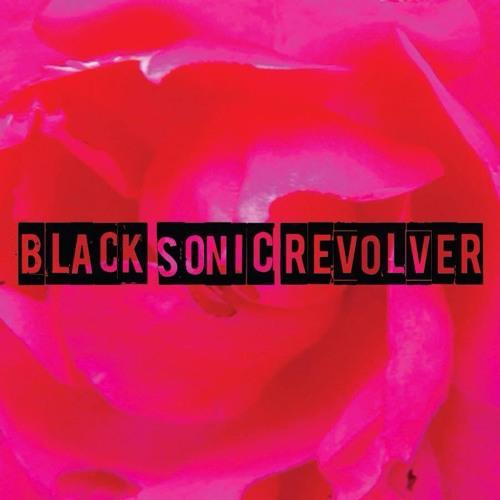 Black Sonic Revolver's avatar