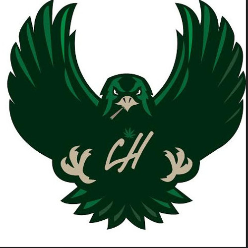 Cheeba Hawk Consortion's avatar