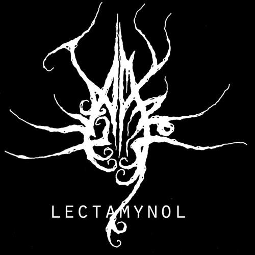 lectamynol's avatar