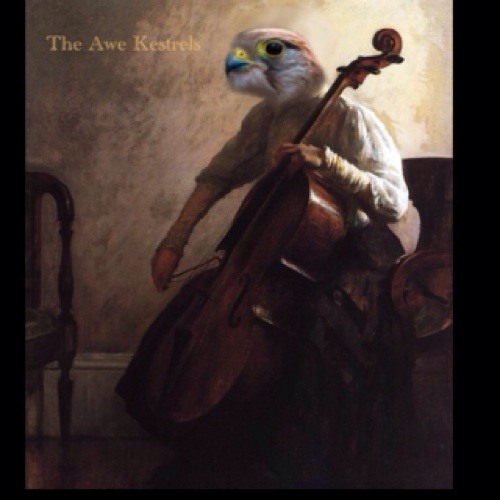 The Awe Kestrels's avatar