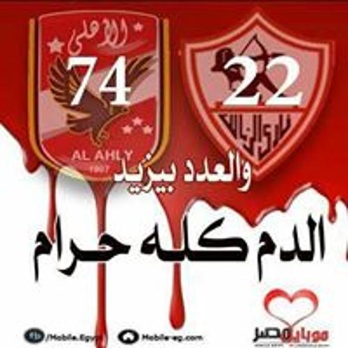 Hisham Elbadry's avatar