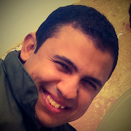 Dŗ Amro A. Fouad's avatar