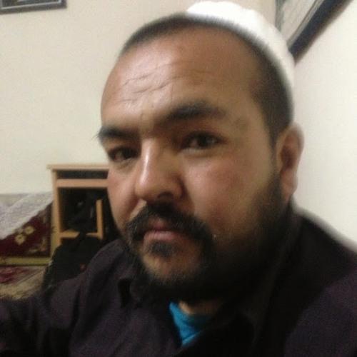 Haji Hussain Bakhsh Faizi's avatar
