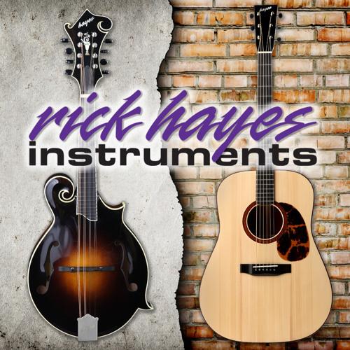 Rick Hayes Instruments's avatar