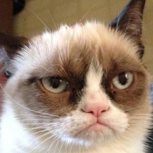 Grumpy Katz's avatar
