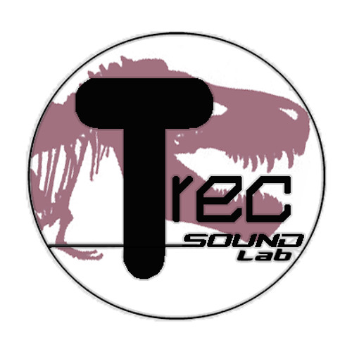 T_REC sound lab's avatar