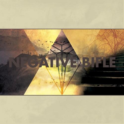 NegativeBifle's avatar