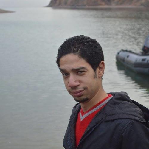 Mahmoud Hatem's avatar