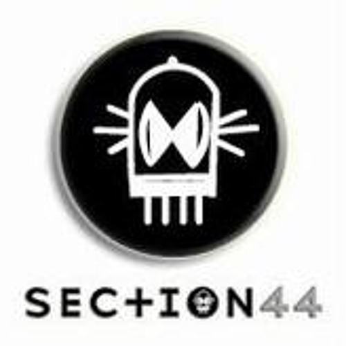 Sec+ion 44 Records's avatar