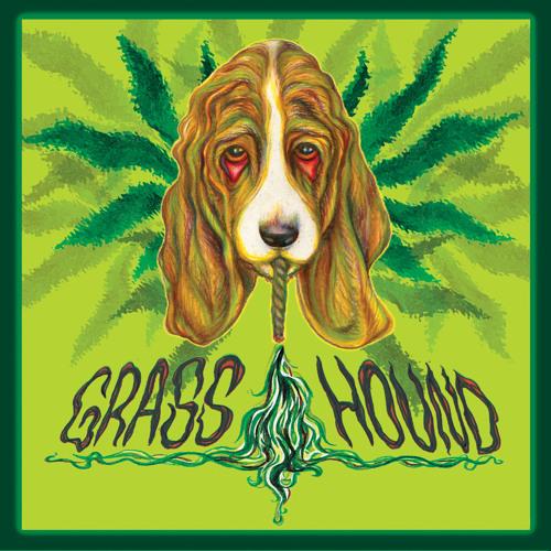 Grass Hound's avatar