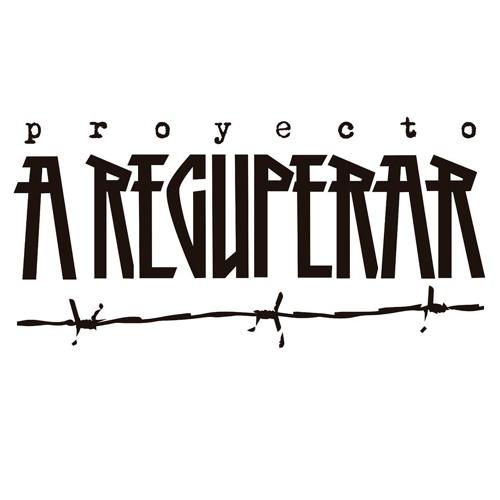 Proyecto A Recuperar's avatar
