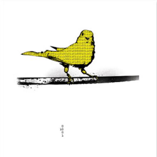 Binary Canary's avatar